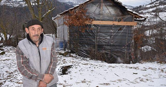 Kış günü naylon barakada yaşam savaşı! Tek isteği bir ev