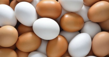 Instagram beğenme rekoru yumurtayla kırıldı