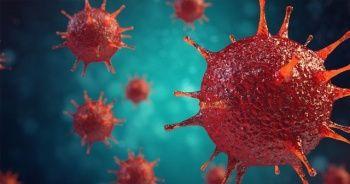 RSV virüsü Ocak ve Şubat'ta zirve yapıyor