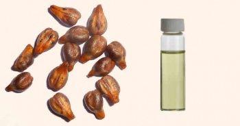 Üzüm Çekirdeği Yağı Nasıl Yapılır? Üzüm Çekirdeği Yağının Faydaları