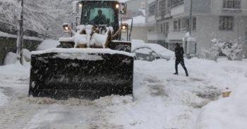 Bingöl'de 281 köy yolu kapandı, okullar tatil edildi
