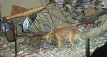 Kartal'da çöken binada ölü sayısı 12'ye yükseldi