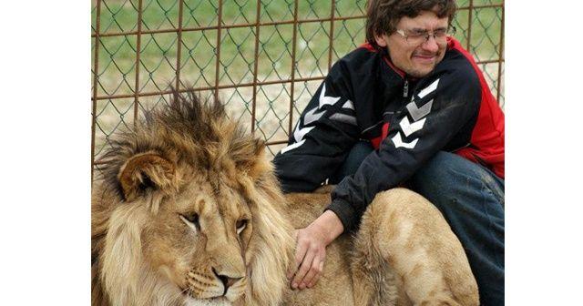 Aslan kendisini besleyen sahibini öldürdü