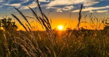 Tarıma dayalı yatırım projelerinde süre uzatıldı