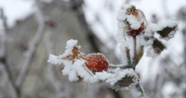 Meteoroloji'den Sivas için zirai don uyarısı
