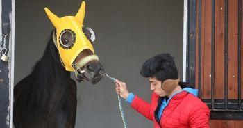 Şampiyon yarış atına alıcı çıkmadı