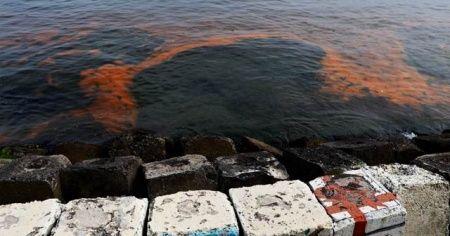 Marmara Denizi turuncuya bürünmüştü! Sebebi belli oldu