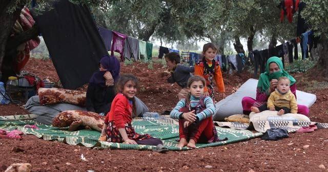 Bombardımandan kaçan siviller zeytinliklere sığındı