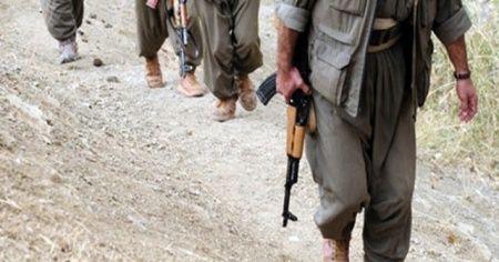 Gri kategoride yer alan PKK'lı terörist Aras Faraşin yakalandı