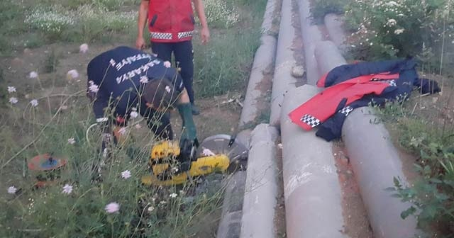 Beton borunun içine sıkışan köpeği itfaiye ekipleri kurtardı