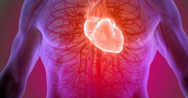 Kalp büyümesi belirtileri nelerdir? | Kalp büyümesi hakkında bilmeniz gerekenler