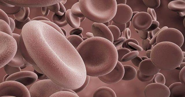 Kan değerleri neden düşer? Kan değerleri düşünce anlama gelir ve nedir?