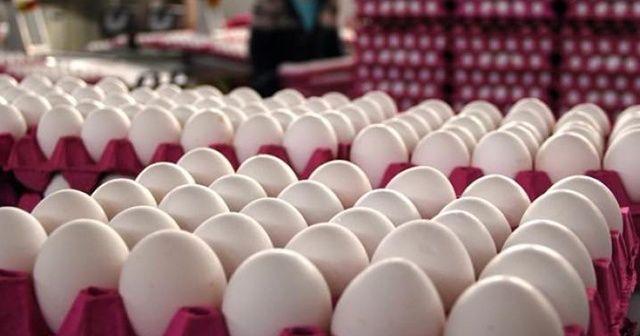 TMO'dan yumurta üreticilerine destek