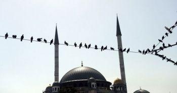 İstanbul'un yeni incisi Taksim'e güzellik katıyor