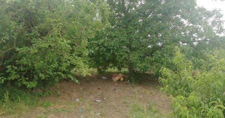 Bursa'da feci ölüm! Piknik yaparken üzerine yıldırım düştü