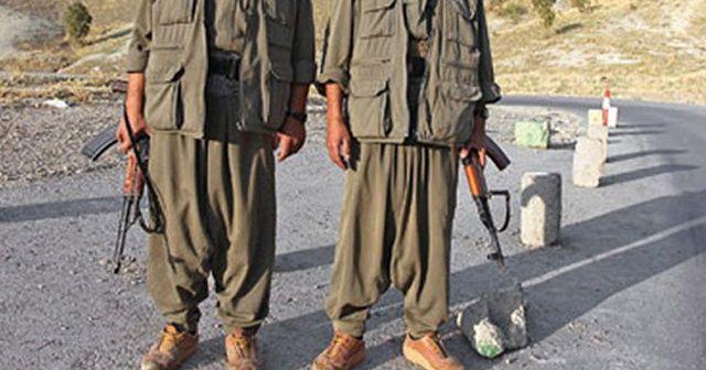 Diyarbakır'da PKK'ya silah ve eleman temin eden 2 terörist yakalandı