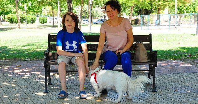Küçük çocuğa saldıran sokak köpekleri korkulu rüya oldu