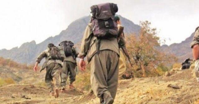 Siirt-Eruh kırsalında 2 terörist ölü olarak ele geçirildi
