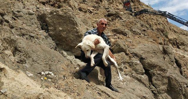 Uçurumda kalan köpeğin yardımına vatandaş koştu
