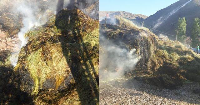 Van'da ot ve saman yangını