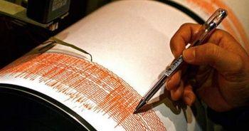 Endonezya'da 7.3 büyüklüğünde deprem