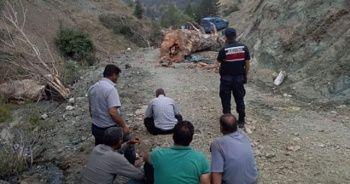 Kesilen ağaç işçiyi ölüme götürdü