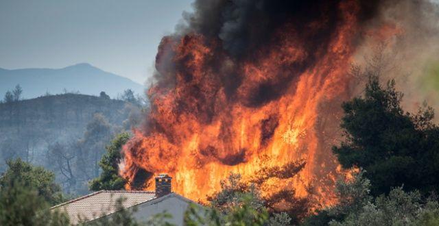 3 gündür devam eden yangın söndürülemiyor