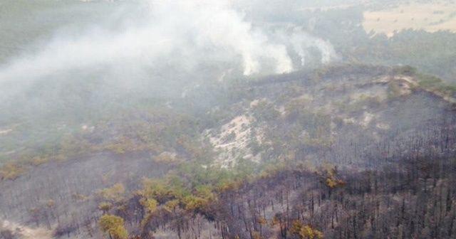 Eskişehir'deki yangın kontrol altında
