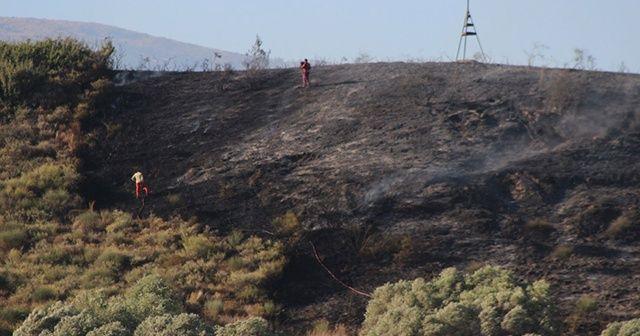 Hatay'da çıkan yangında 4 hektarlık alan kül oldu