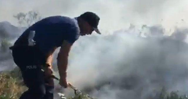 Kahraman polis orman yangınını engelledi
