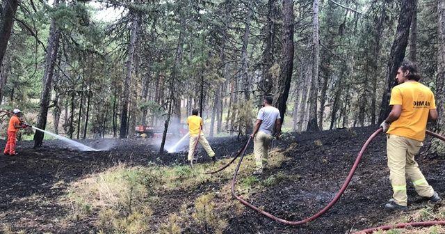 Kütahya'da korkutan orman yangını!