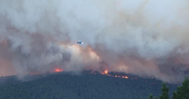 Marmara Adası'ndaki orman yangınıyla ilgili 1 şüpheli gözaltına alındı