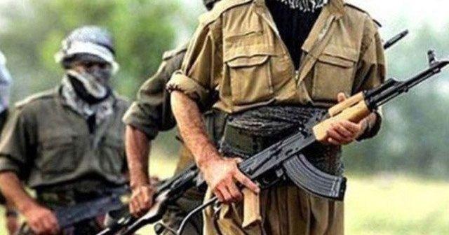 Siirt ve Tunceli'de terör operasyonu, 3 terörist etkisiz hale getirildi