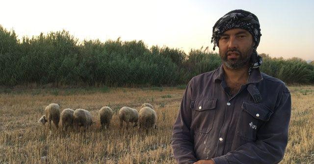 Siyaseti bıraktı çobanlık yapıyor