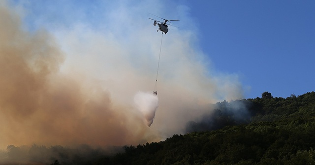 Yenişehir'deki orman yangını ile ilgili 3 gözaltı kararı!