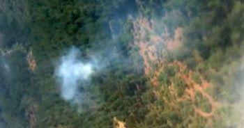 Bursa'da korkutan orman yangını!