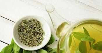 Yeşil çayın bilinmeyen faydaları, Yeşil çay içmenin faydaları saymakla bitmiyor