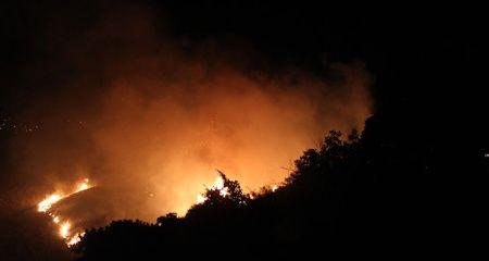 Hatay'da otluk alanda yangın çıktı