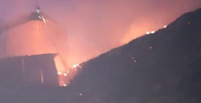 100 bin büyükbaşın bulunduğu çiftlikte yangın