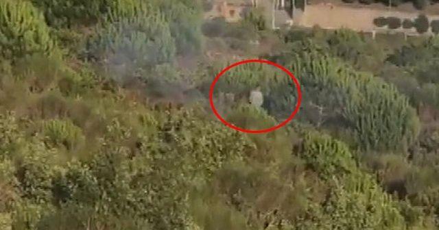 Bakan Pakdemirli: 'Pendik' deki orman yangında terör  bağlantısı olduğunu tespit ettik'
