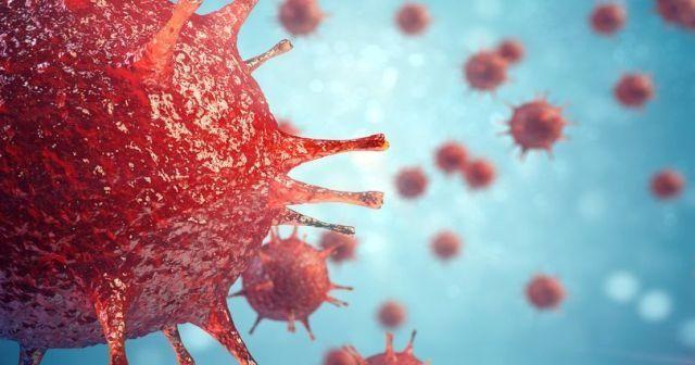 HIV virüsü nedir? HIV virüsü nasıl bulaşır? HIV virüsü nasıl tedavi edilir?