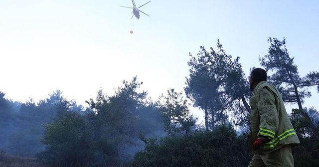 Pendik'teki orman yangınıyla ilgili yeni gelişme