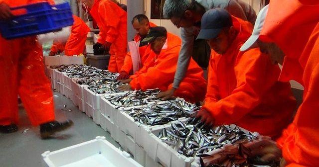 """Yasak sona erdi balıkçılar """"Vira Bismillah"""" dedi"""