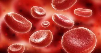 Her 4 saniyede 1 kişi 'sepsis'ten hayatını kaybediyor