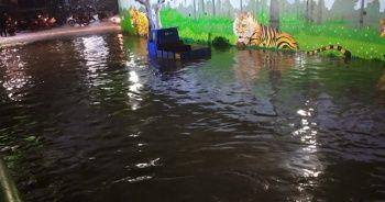 Hindistan'da sel felaketi: 11 ölü