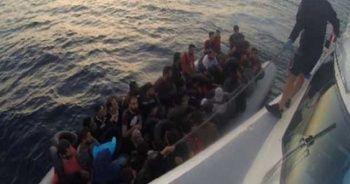 İzmir'de 142 kaçak göçmen yakalandı