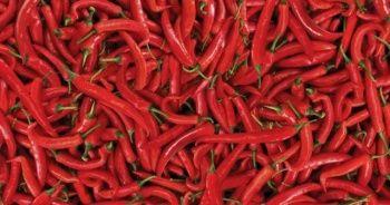 Kırmızı biber faydaları ve zararları nelerdir? Kırmızı biberin besin değerleri