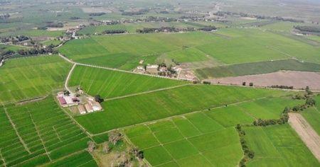 200 milyon metrekare Hazine arazisi çiftçilere kiraya verilecek