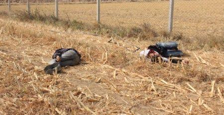 İki genç mısır tarlasında bu halde bulundu