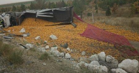 Konya'da mısır yüklü tır devrildi: 1 yaralı